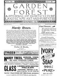 Garden and Forest Volume 7 Issue 351 Nov... by Charles S. Sargent