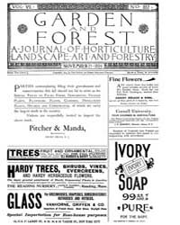 Garden and Forest Volume 7 Issue 352 Nov... by Charles S. Sargent
