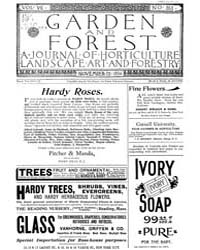 Garden and Forest Volume 7 Issue 353 Nov... by Charles S. Sargent