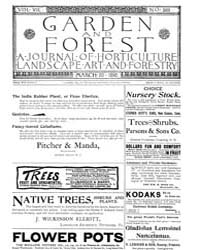 Garden and Forest Volume 8 Issue 369 Mar... by Charles S. Sargent