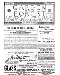 Garden and Forest Volume 8 Issue 398 Oct... by Charles S. Sargent