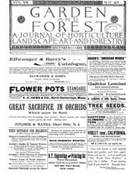 Garden and Forest Volume 8 Issue 407 Dec... by Charles S. Sargent