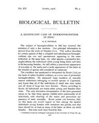 Biological Bulletin : 1908 ; Oct. No. 5 ... Volume Vol. 15 by Schachinger, Carol