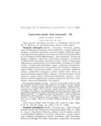 Botanical Gazette : 1891 ; Jul. No. 7 Vo... Volume Vol. 16 by Ruddat, M.