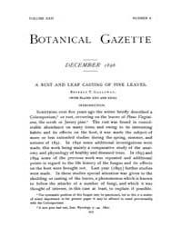 Botanical Gazette : 1896 ; Dec. No. 6 Vo... Volume Vol. 22 by Ruddat, M.