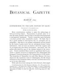 Botanical Gazette : 1897 ; Mar. No. 3 Vo... Volume Vol. 23 by Ruddat, M.