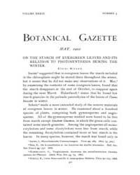 Botanical Gazette : 1902 ; May No. 5 Vol... Volume Vol. 33 by Ruddat, M.