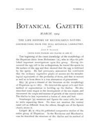 Botanical Gazette : 1904 ; Mar. No. 3 Vo... Volume Vol. 37 by Ruddat, M.