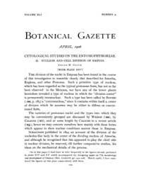 Botanical Gazette : 1906 ; Apr. No. 4 Vo... Volume Vol. 41 by Ruddat, M.