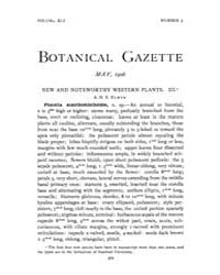 Botanical Gazette : 1906 ; May No. 5 Vol... Volume Vol. 41 by Ruddat, M.