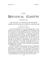 Botanical Gazette : 1914 ; Mar. No. 3 Vo... Volume Vol. 57 by Ruddat, M.