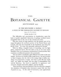 Botanical Gazette : 1915 ; Sep. No. 3 Vo... Volume Vol. 60 by Ruddat, M.