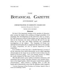 Botanical Gazette : 1916 ; Nov. No. 5 Vo... Volume Vol. 62 by Ruddat, M.