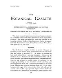 Botanical Gazette : 1917 ; Apr. No. 4 Vo... Volume Vol. 63 by Ruddat, M.
