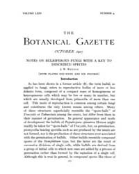 Botanical Gazette : 1917 ; Oct. No. 4 Vo... Volume Vol. 64 by Ruddat, M.