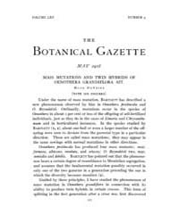 Botanical Gazette : 1918 ; May No. 5 Vol... Volume Vol. 65 by Ruddat, M.
