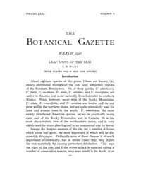 Botanical Gazette : 1921 ; Mar. No. 3 Vo... Volume Vol. 71 by Ruddat, M.
