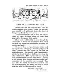 Copeia : 1914 ; Oct. 15 No. 11 Nos. 2 13 by Schaefer, Scott, A.