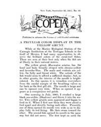 Copeia : 1915 ; Sep. 22 No. 22 Nos. 14 2... by Schaefer, Scott, A.