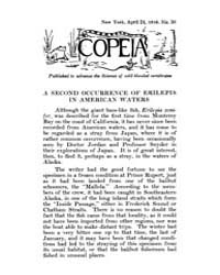Copeia : 1916 ; Apr. 24 No. 30 Nos. 26-3... by Schaefer, Scott, A.