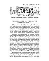 Copeia : 1916 ; Jul. 24 No. 33 Nos. 26 3... by Schaefer, Scott, A.