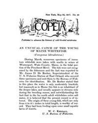 Copeia : 1917 ; May 24 No. 44 Nos. 39 51 by Schaefer, Scott, A.