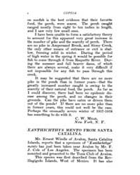 Copeia : 1919 ; Jan. 22 No. 65 Nos. 65 7... by Schaefer, Scott, A.