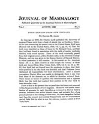 Journal of Mammalogy : 1920 Aug No. 4, V... Volume Vol.35 by