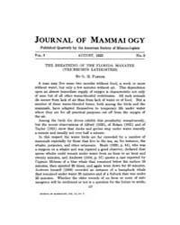 Journal of Mammalogy : 1922 Aug No. 3, V... Volume Vol.39 by