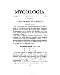 Mycologia : 1910 Jul. No. 4, Vol. 2 Volume Vol. 2 by