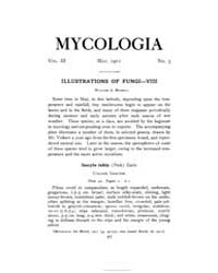 Mycologia : 1911 May No. 3, Vol. 3 Volume Vol. 3 by