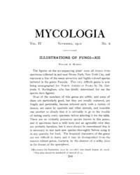 Mycologia : 1912 Nov. No. 6, Vol. 4 Volume Vol. 4 by