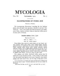 Mycologia : 1914 Sep. No. 5, Vol. 6 Volume Vol. 6 by