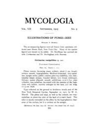 Mycologia : 1915 Sep. No. 5, Vol. 7 Volume Vol. 7 by