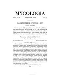 Mycologia : 1916 Sep. No. 5, Vol. 8 Volume Vol. 8 by