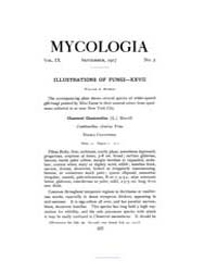 Mycologia : 1917 Sep. No. 5, Vol. 9 Volume Vol. 9 by