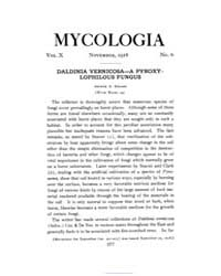 Mycologia : 1918 Nov. No. 6, Vol. 10 Volume Vol. 10 by