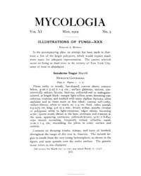 Mycologia : 1919 May No. 3, Vol. 11 Volume Vol. 11 by
