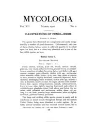 Mycologia : 1920 Mar. No. 2, Vol. 12 Volume Vol. 12 by