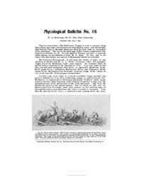 Mycological Bulletin : 1904 May 5 No. 16... Volume Vol. 2 by