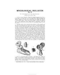 Mycological Bulletin : 1905 Apr. 15 No. ... Volume Vol. 3 by