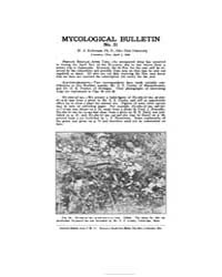 Mycological Bulletin : 1905 Apr. 1 No. 3... Volume Vol. 3 by