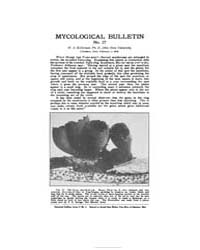 Mycological Bulletin : 1905 Feb. 1 No. 2... Volume Vol. 3 by