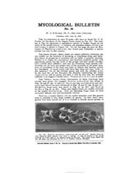 Mycological Bulletin : 1905 Jun. 15 No. ... Volume Vol. 3 by