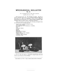 Mycological Bulletin : 1905 Jun. 1 No. 3... Volume Vol. 3 by