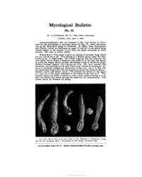 Mycological Bulletin : 1906 Apr. 1 No. 5... Volume Vol. 4 by