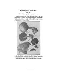 Mycological Bulletin : 1906 Feb. 15 No. ... Volume Vol. 4 by