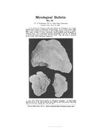 Mycological Bulletin : 1906 Mar. 15 No. ... Volume Vol. 4 by