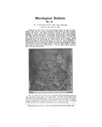 Mycological Bulletin : 1906 Mar. 1 No. 5... Volume Vol. 4 by