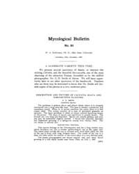 Mycological Bulletin : 1907 Nov. No. 83,... Volume Vol. 5 by